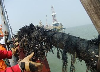 Zhaodong Oil Field Cable Repairing Project (Year 2012--Roc Oil)