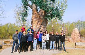 Spring Outing To Yangliuqing Manor